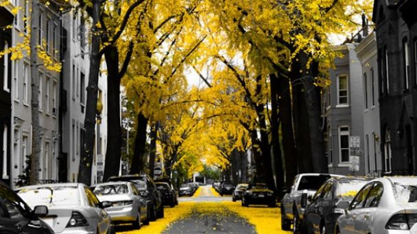 Malý Lapáš – Miestna komunikácia – ulica Ždiarska – oznámenie o začatí územného konania – verejná vyhláška