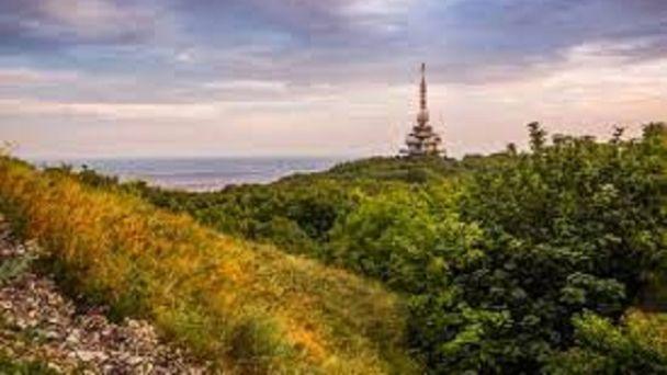 Verejná vyhláška - OÚ Nitra, Referát lesného hospodárstva